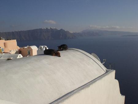 Kalimera from Santorini